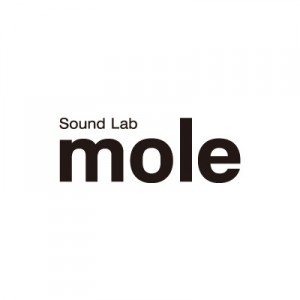 Sound Lab mole / Logo, Flyer & Pamphlet